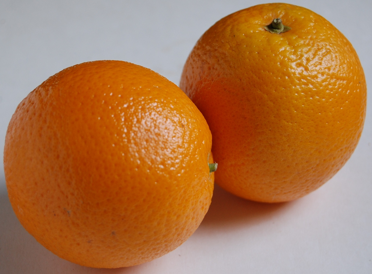 Image result for 2.    Oranges
