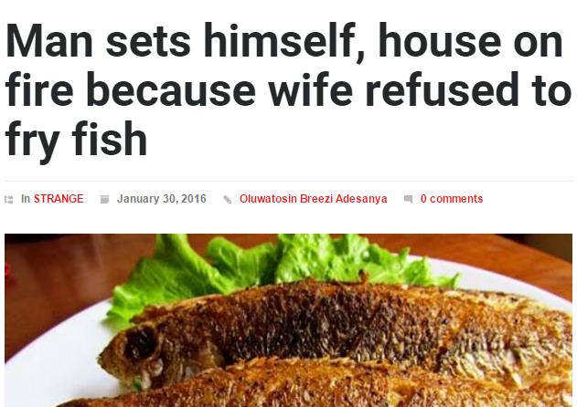 15 Funny and Strange Nigerian News Headlines | Zikoko!