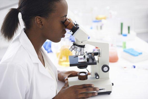 School of Pharmacy scientist